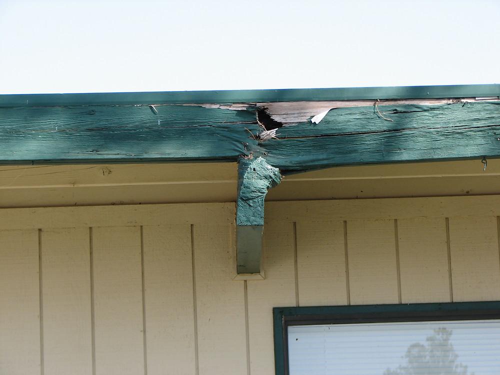 Roof beam dry rot repair failing due to dry rot