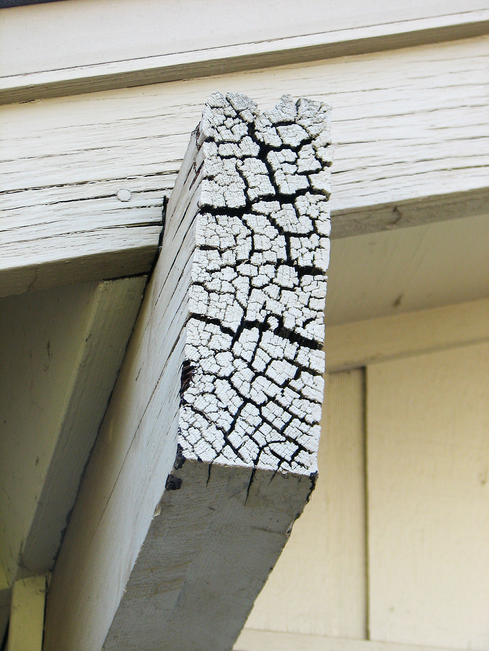 End grain cracking in roof beam with dry rot