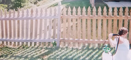 Fence painting and staining