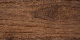 walnut-america-980x490.jpg