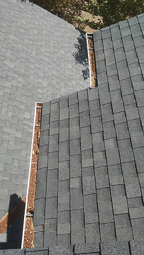 Gutter Cleaning Before Willamette Valley