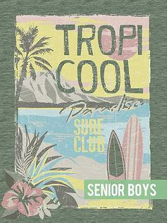 Senior Boys 2C- link.jpg