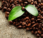 organic-coffee-beans-store.png
