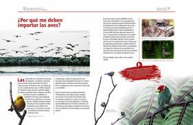 Cómo puedo yo contribuir a la conservación de las aves en Colombia_Página_05.jpg