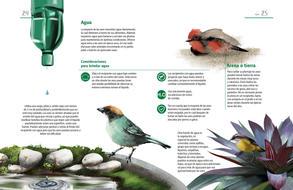 El buen amigo de las aves en espacios urbanos hojas individuales13.jpg