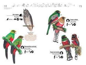 Libro de aves de Cali37.jpg