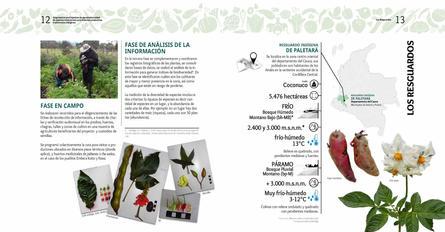 Diagnosticos Agrobiodiversidad pliegos_Página_07.jpg