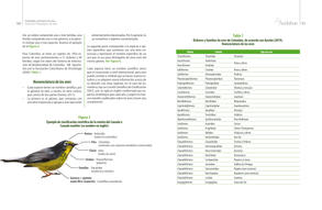 Proyectos pedagogicos de aula final baja26.jpg