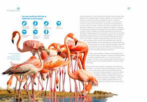Aves acuaticas de Colombia final junio baja _Página_14.jpg