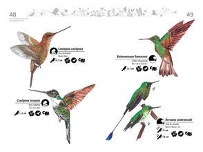 Libro de aves de Cali25.jpg