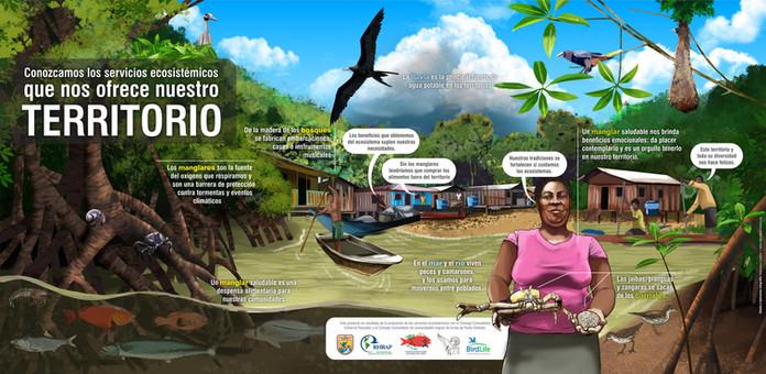 Infografia Servicios Ecosistemicos para la pagina web.jpg
