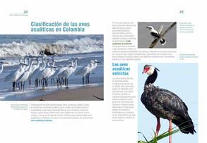 Aves acuaticas de Colombia final junio baja _Página_13.jpg