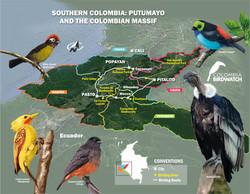 SOUTHERN COLOMBIA PUTUMAYO AND THE COLOMBIAN MASSIF CURVAS