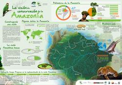 INFOGRAFIA VISIÓN AMAZONICA