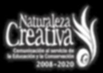 Logo 2020 web.png