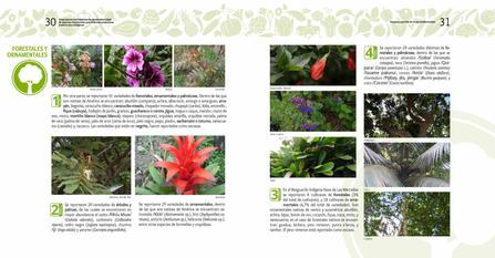 Diagnosticos Agrobiodiversidad pliegos_Página_16.jpg