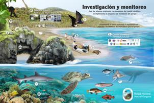 7- Infografia - Monitoreo para la pagina web.jpg