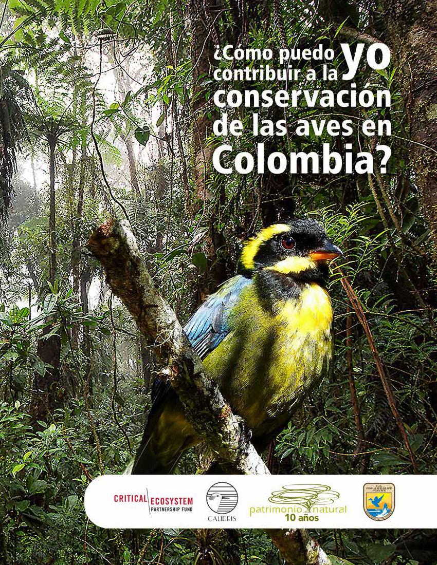 Conservación de las Aves en Colombia