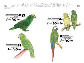Libro de aves de Cali44.jpg