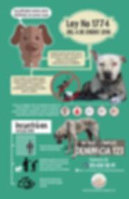 Infografia3.jpg