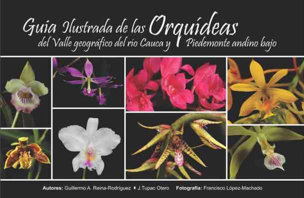 GUÍA DE ORQUIDEAS