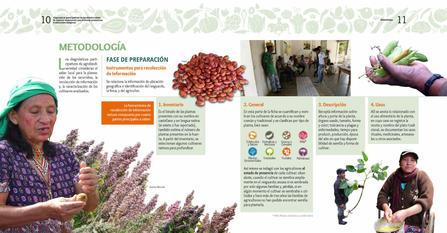 Diagnosticos Agrobiodiversidad pliegos_Página_06.jpg