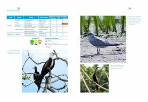 Aves acuaticas de Colombia final junio baja _Página_16.jpg