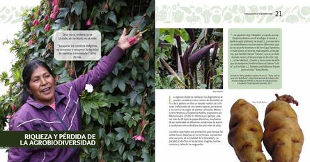 Diagnosticos Agrobiodiversidad pliegos_Página_11.jpg