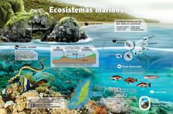 Arrecifes de coral Gorgona