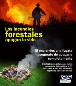 Valla 2 Incendios forestales