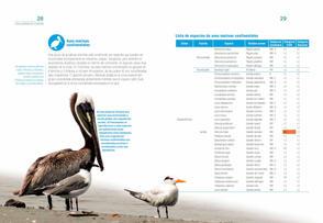 Aves acuaticas de Colombia final junio baja _Página_15.jpg