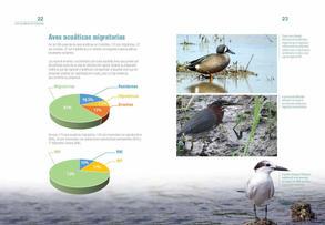 Aves acuaticas de Colombia final junio baja _Página_12.jpg
