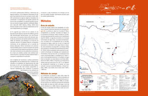 Actualizacion del plan de manejo para Oophaga lehmanni13.jpg
