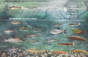 Cartilla Nutrias y Peces dos páginas_Página_10.jpg