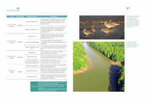 Aves acuaticas de Colombia final junio baja _Página_34.jpg