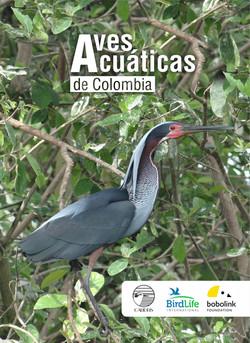 Caratula aves acuaticas para la pagina web