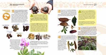 Diagnosticos Agrobiodiversidad pliegos_Página_14.jpg