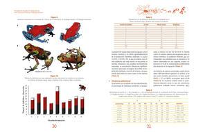 Actualizacion del plan de manejo para Oophaga lehmanni16.jpg