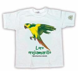 LORO OREJIAMARILLO