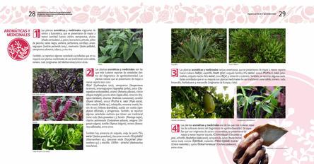 Diagnosticos Agrobiodiversidad pliegos_Página_15.jpg