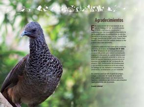 Libro de aves de Cali4.jpg