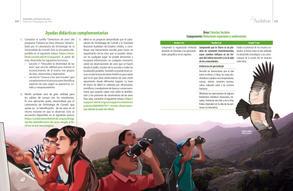 Proyectos pedagogicos de aula final baja33.jpg