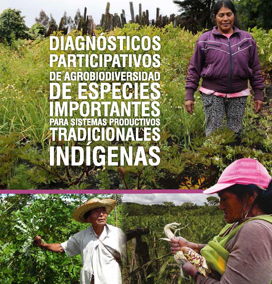 Diagnósticos Agrobiodiversidad