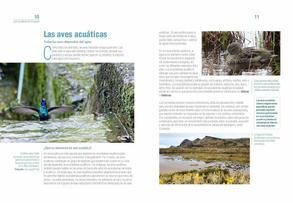 Aves acuaticas de Colombia final junio baja _Página_06.jpg