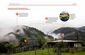 Cómo puedo yo contribuir a la conservación de las aves en Colombia_Página_12.jpg