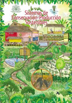 sistema de conservacion_RNS
