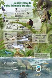 5-Infografia - Fauna y flora terrestre para la pagina web.jpg