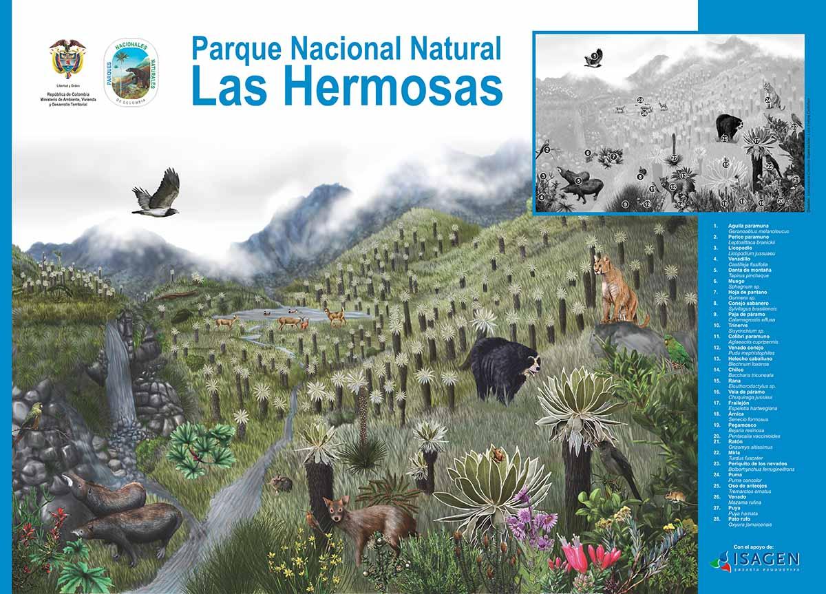 PÁRAMO DE LAS HERMOSAS
