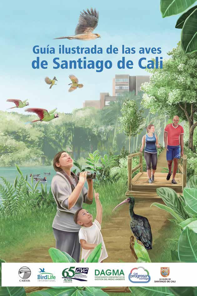 Guía ilustrada de las aves de Cali