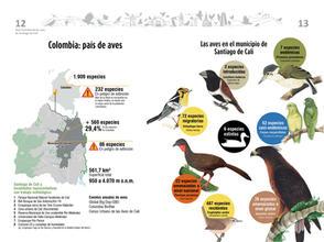 Libro de aves de Cali7.jpg